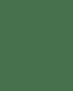 Leopard Headband & Tail Set
